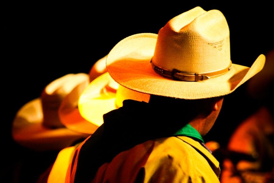 Catireiros de São João D'Aliança no X Encontro de Culturas | Foto de Anne Vilela